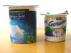 2yogurtsblog.jpg