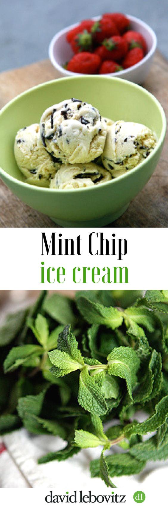 Homemade fresh mint ice cream with chocolate chips