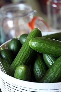 uncooked cucumbers
