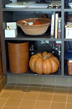 french pumpkin