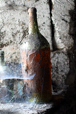 spidery cognac