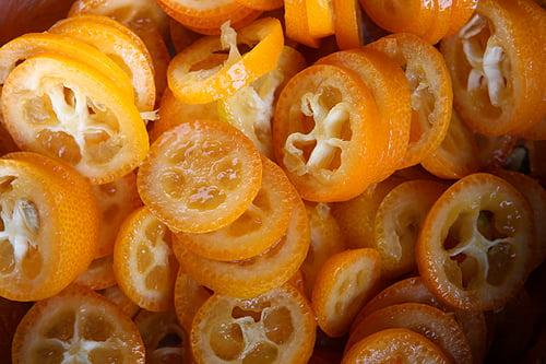 sliced kumquats blog