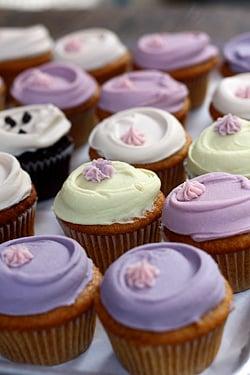 babycakes cupcakes