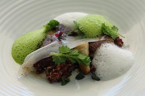 mushroom, quinoa, sea foam