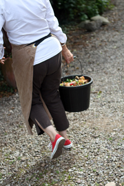 Darina Allen feeding the hens