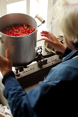 weighing red currants