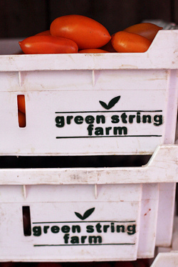 green string farm