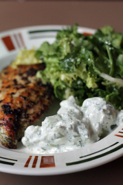 tzatziki & chicken