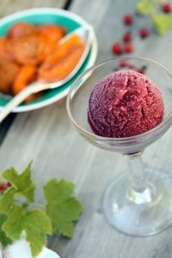 red wine raspberry sorbet