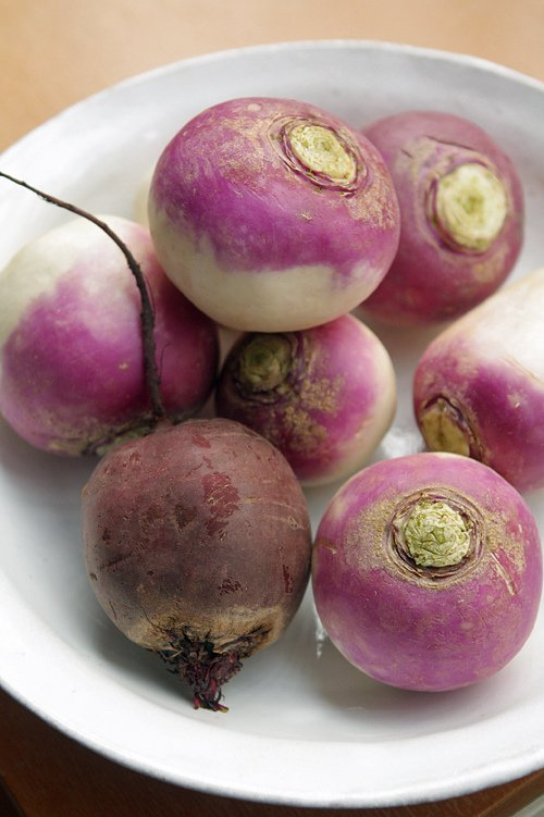 turnips and beets for pickling