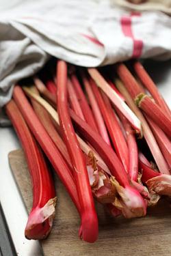 just-picked rhubarb