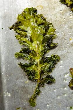 kale leaf for kale chips