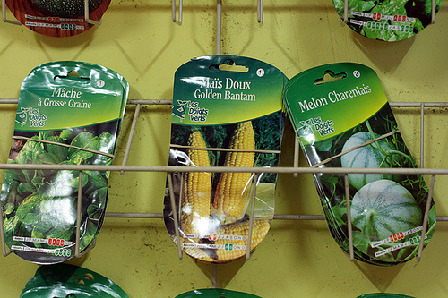 French vegetable seeds