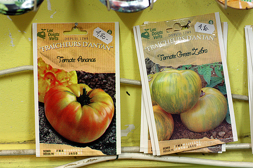 French tomato seeds
