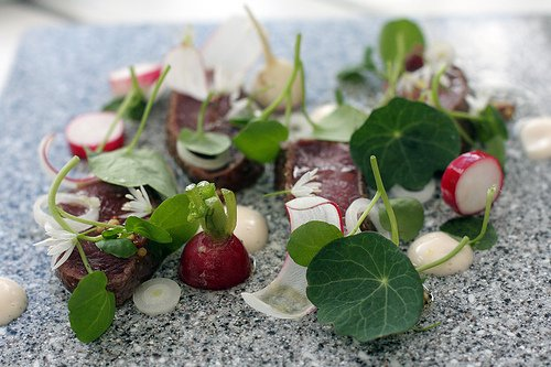reindeer and radishes at Lux