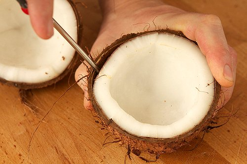 extracting coconut meat