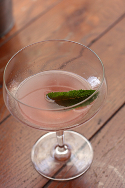 mary celeste cocktail