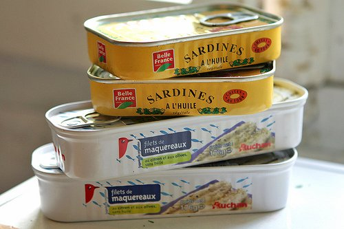 sardines and mackerel