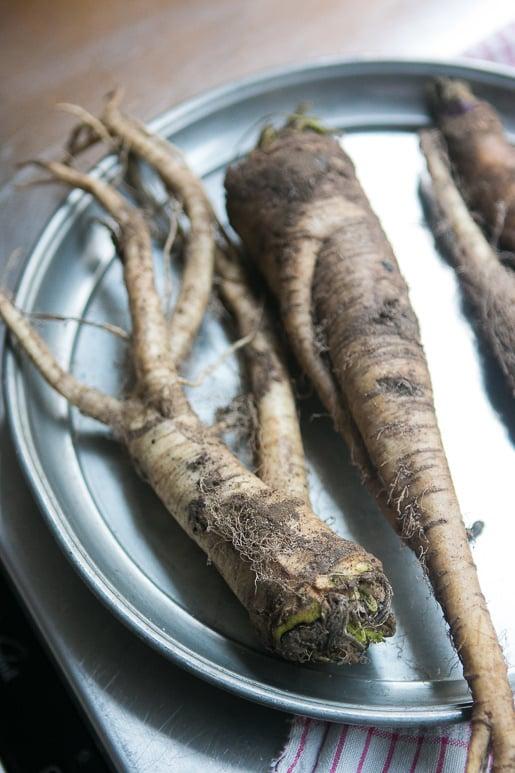 bitter turnips