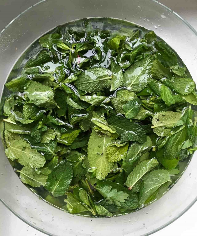 Mint pesto recipe