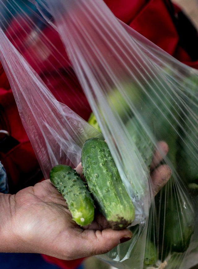 La Ferme de Viltain fresh cornichons