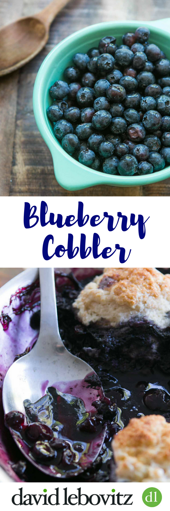 The classic seasonal fruit dessert, made with fresh blueberries!