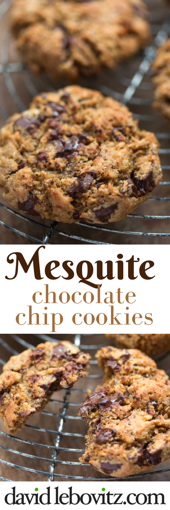 Delicious chocolate chip cookies with the hearty taste of mesquite.