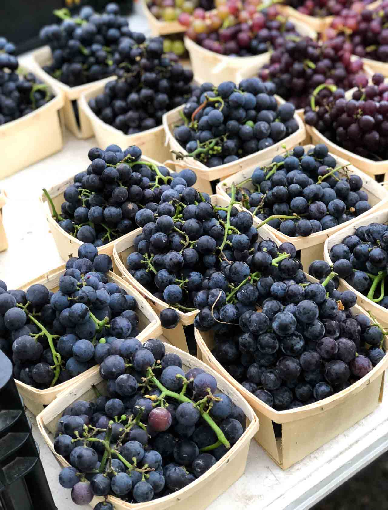 Fresh Grape Sherbet Recipe
