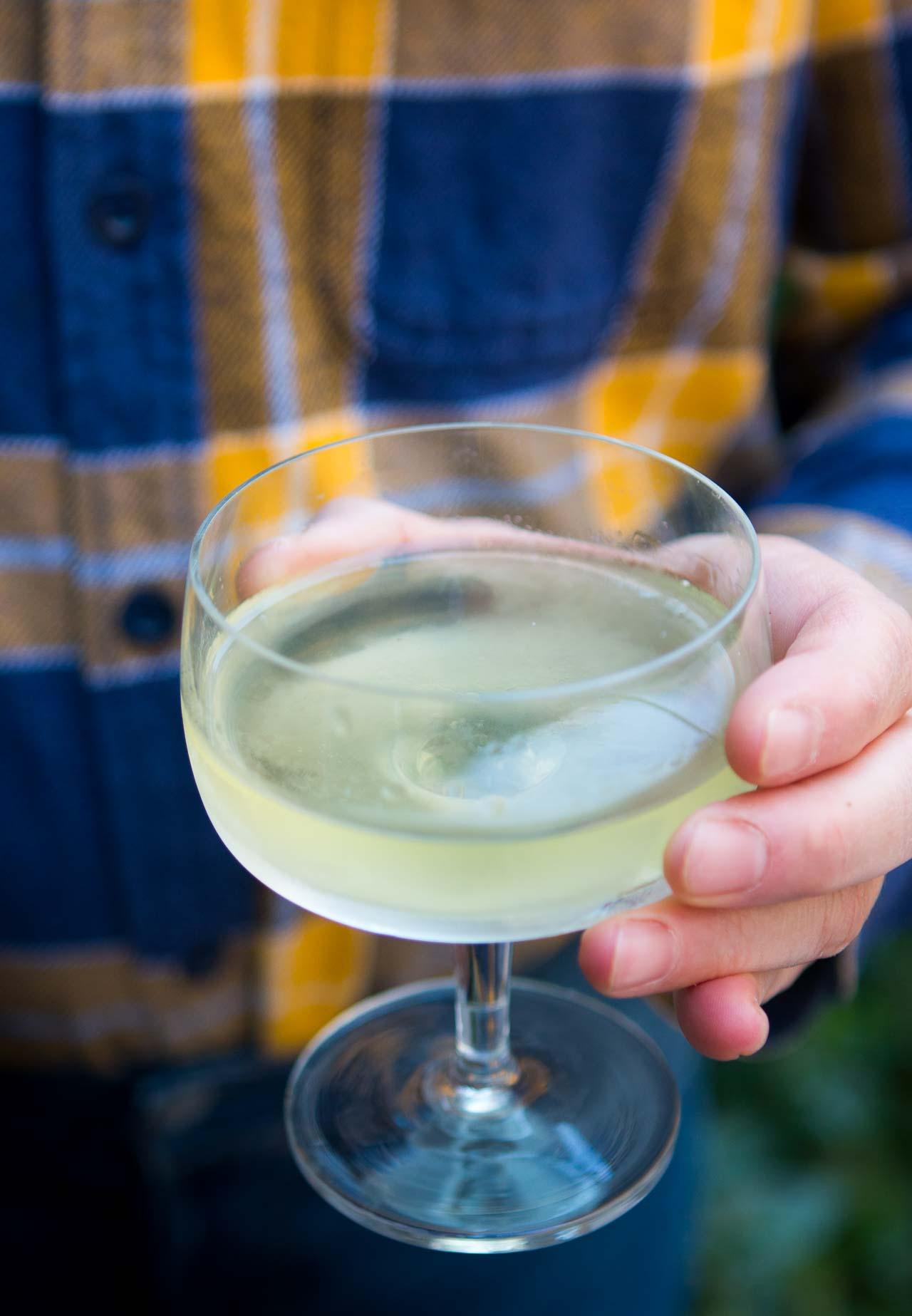 The Alaska Cocktail